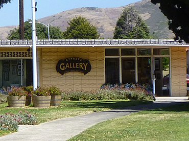 Lompoc Cypress Gallery